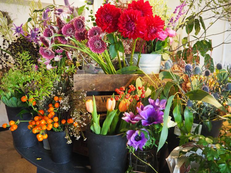 秋満開!お部屋がパッと華やぐ「秋に飾りたいオススメのお花」4選