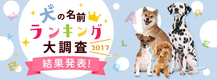 男の子1位はコタロウ、女の子は?最新「人気の犬の名前」ランキング