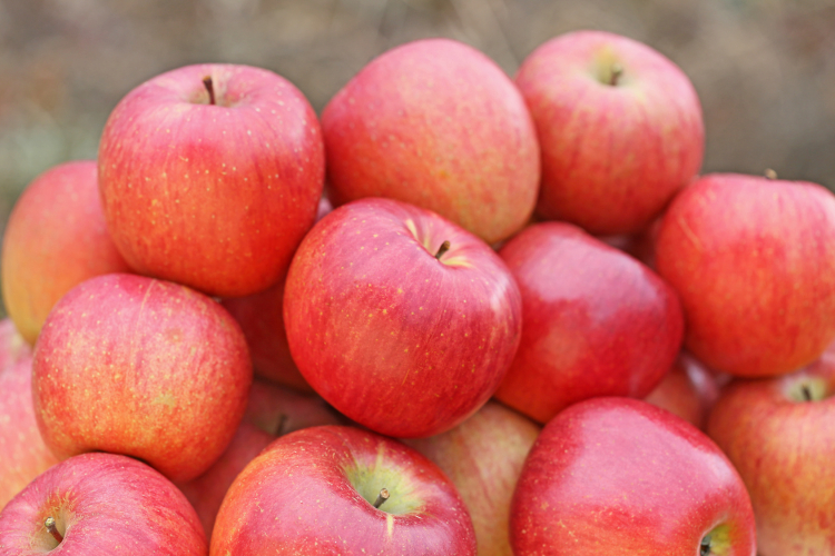 りんご 保存期間
