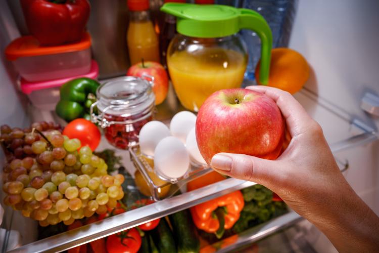 りんご 冷蔵庫 保存