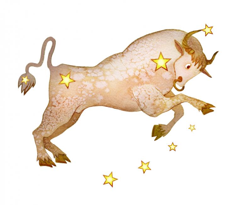 【牡牛座の2018年】イヴルルド遙華が占う12星座別・今年の運勢