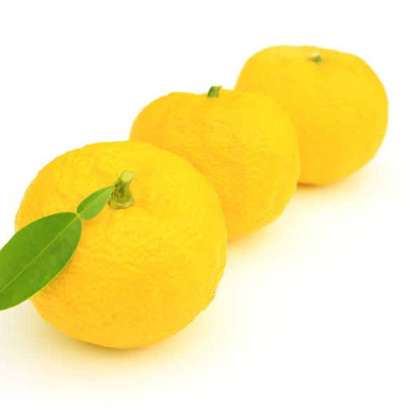 柚子の長持ち保存方法… 選び方のコツから 冷凍保存の仕方まで