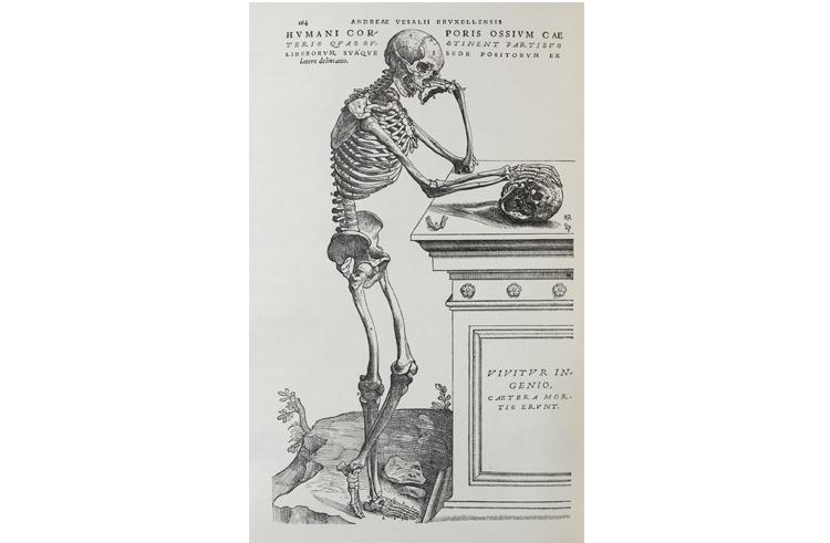 人って不思議! 来春開催の特別展「人体-神秘への挑戦-」発表レポ