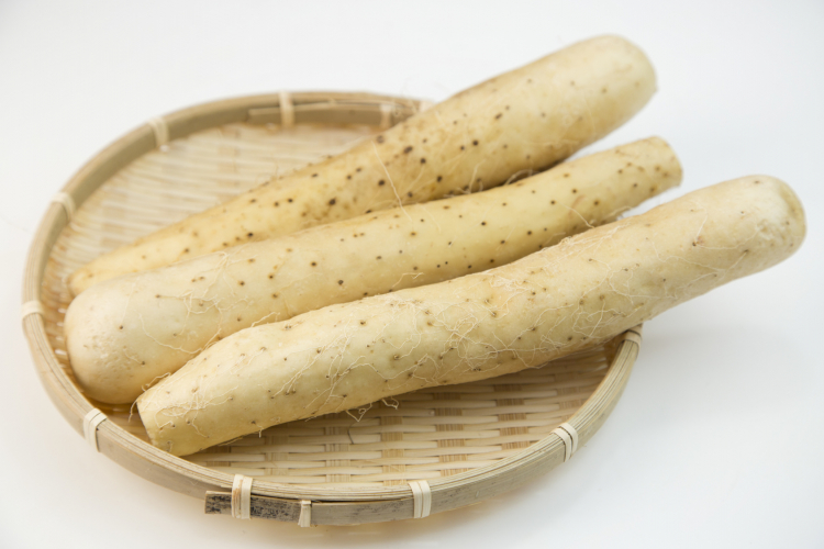 長芋の長持ち保存方法…選び方のコツから冷凍保存の仕方まで