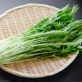 水菜の長持ち保存方法…選び方のコツから冷凍保存の仕方まで