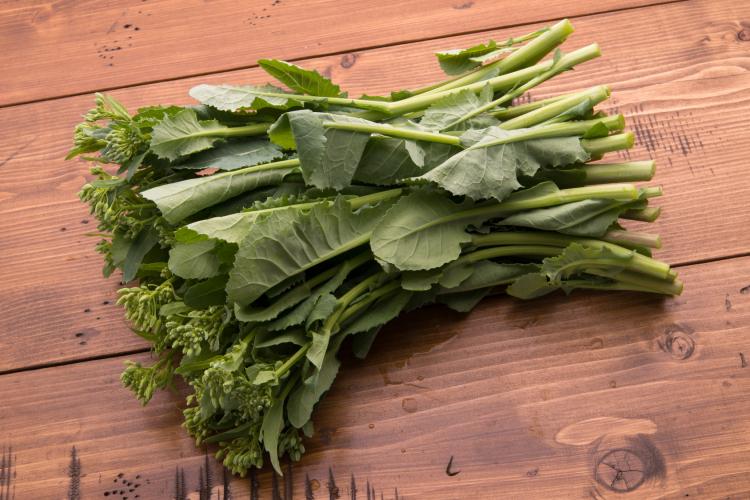 菜の花 冷凍保存 生