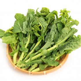 すぐクタッとしがちな「菜の花」の長持ち保存方法…選び方のコツから冷凍保存の仕方まで