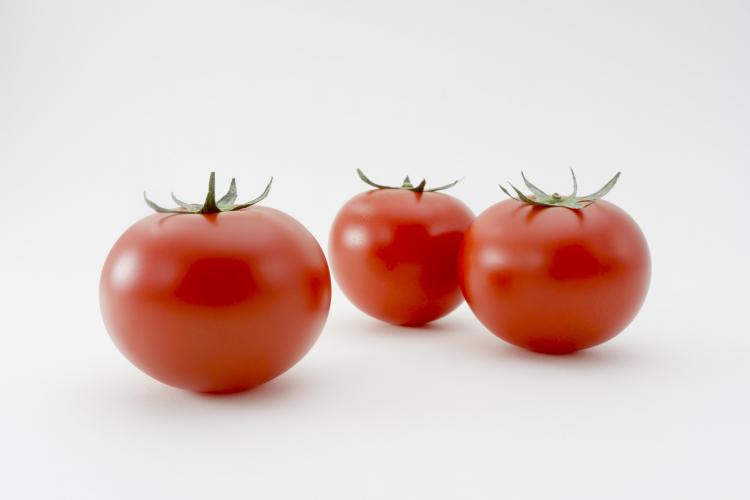 トマト 冷蔵保存