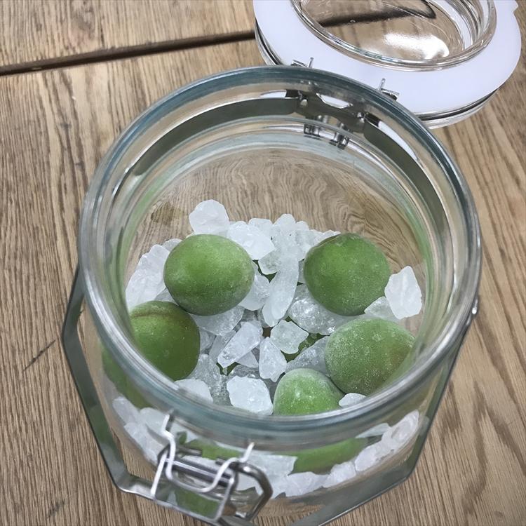 子どもと一緒に簡単手しごと体験!自家製梅ジュースをおいしく作るポイントとは?