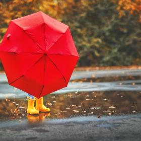 空から落っこちてきたのは…!?「雨の日」が楽しみになる絵本【絵本ナビ編集長select 6月】