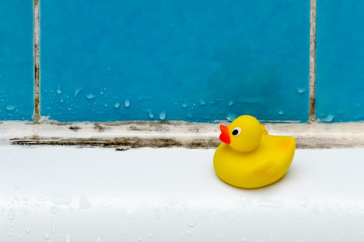 風呂 カビ 重曹
