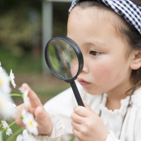 子どもの目がキラキラ輝く!先輩ママがすすめる「後悔しない自由研究」