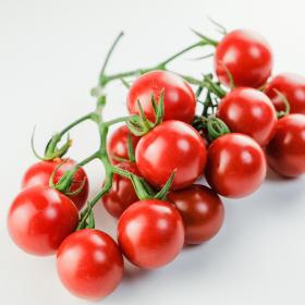 食べきれないなら上手に保存!ミニトマトの長持ち保存方法…選び方や冷凍保存の仕方