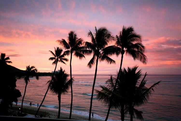ハワイ旅行ではまずココでしょ!フォトジェニックな定番スポット5つ