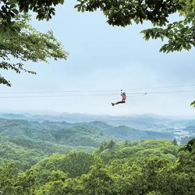 空のお散歩、気持ちいい!「森のジップライン ムササビ」にkufuraが行ってみた