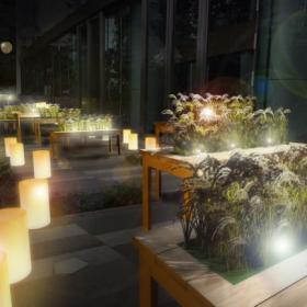 オフィスビルに棚田が出現!都会の真ん中で日本の食の「大収穫祭」を楽しもう