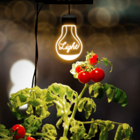 室内で手軽に家庭菜園ができちゃう!? おしゃれな「植物栽培ライト」新登場