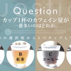 カフェインの量が一番多いのはどれ?【初級編・紅茶検定♯5】
