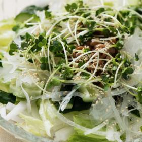 納豆×シャキシャキ野菜で体がよろこぶ「納豆サラダ」 太らない・もたれない!松田美智子の真夜中ごはん#5