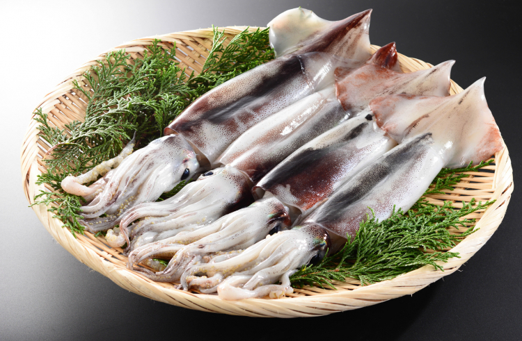 皮を簡単きれいにむく技も!イカの長持ち保存方法…選び方のコツから冷凍保存の仕方まで