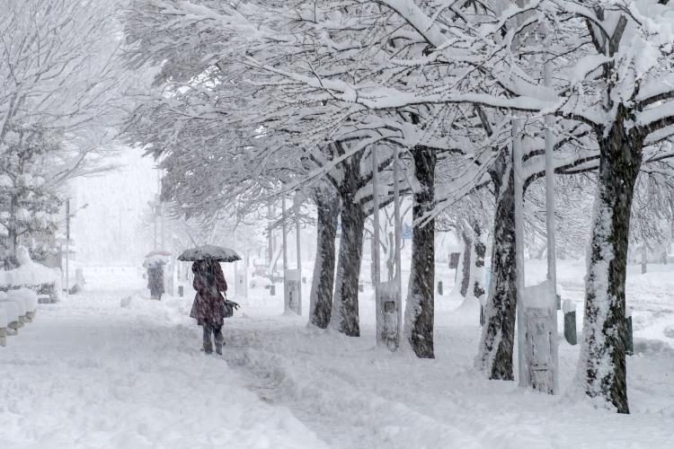 東京でも!? 念のため確認したい「雪国在住209人に聞いた」雪の日通勤で気をつけたいこと