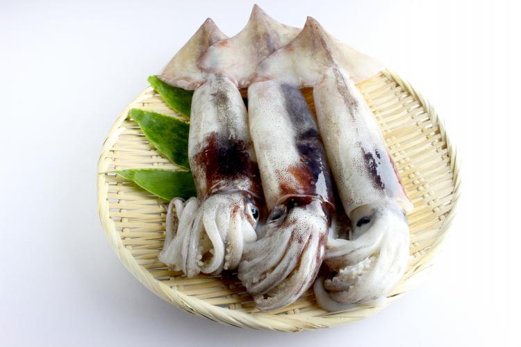 イカビギナーにもオススメ!「イカを使った簡単料理」500人の絶品アイディアがずらり
