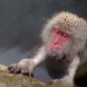 【ドアを開けたら、旅が始まる#2】アジアの湿度「気分は、温泉!」