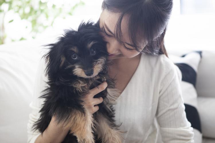 子犬だけじゃないの?「飼い始める犬の年齢」別のポイント【ペット雑学帳】vol.4