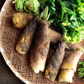 6位はなんと「つくし」!春に食べたくなる「春野菜」3位たけのこ、2位菜の花…1位は?