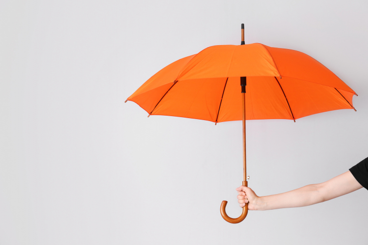 ビニ傘?それとも、折りたたみに長傘…女性に聞く「愛用の1本」最も選ばれた傘は
