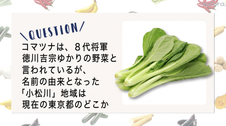 【野菜クイズ♯2】小松菜の由来は、東京の○○川だった!?