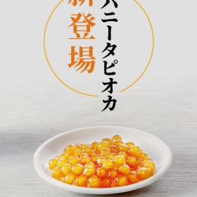 「comma tea(コンマティー)」からハニータピオカ新登場!はちみつにじっくり漬け込みました