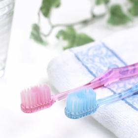 かける収納、増えてます!使いやすい「歯ブラシ」の収納術まとめ【kufura収納調査隊】vol.66
