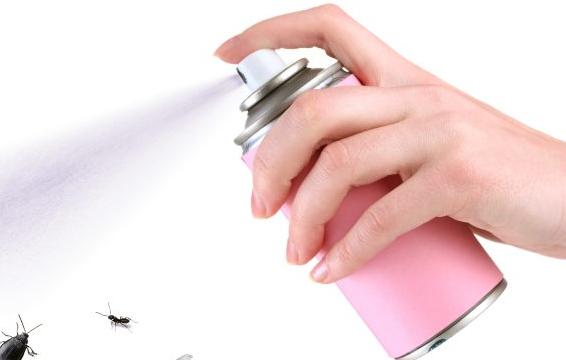 退治するのは夫or妻…どっち?「家の中に虫が現れたときの対処法」男女500人に調査