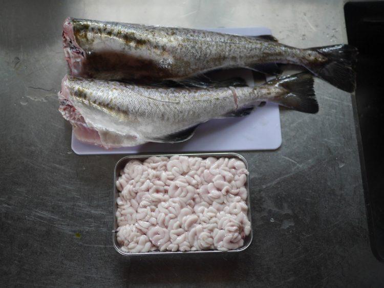 突然やってきた、超大物の鱈(タラ)との格闘の結果は…【お米農家のヨメごはん#16】