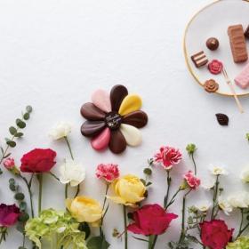 ホワイトデーの贈り物に!「モロゾフ」から春らしさあふれる新ブランドが登場