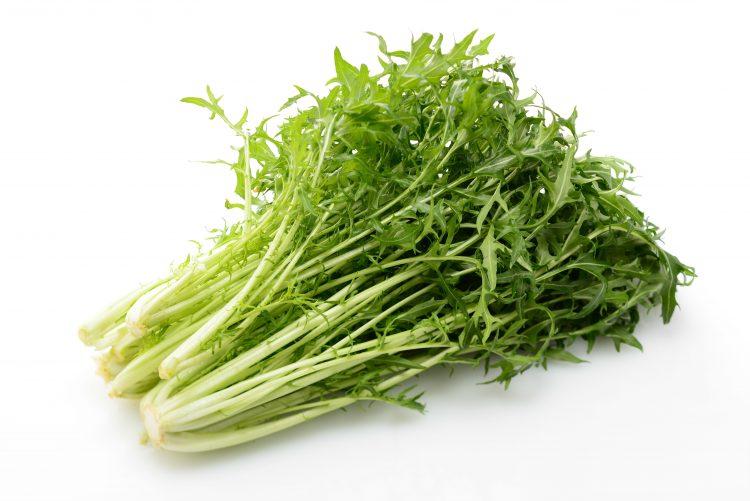 水菜 保存方法