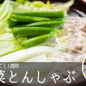 「白菜とんしゃぶ」オリーブオイルと塩でシンプルに味わいたい【松田美智子の白菜丸ごと一週間#5】