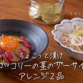 「ブロッコリーの茎」で作ったザーサイ風漬け物をナムルやユッケにおいしくアレンジ!【ちょこっと漬け♯28】