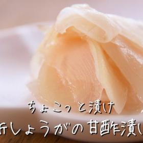 「新しょうが」の甘酢漬け(ガリ)の作り方!まとめて作っておくと便利です【ちょこっと漬け♯31】