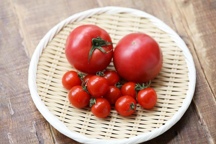「トマト」の高い栄養価に注目!保存方法・上手な切り方まで【管理栄養士監修】