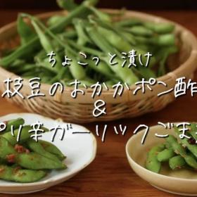 夏のおつまみに!枝豆が「おかかポン酢」&「ピリ辛ガーリックごま油」2つの味に!【ちょこっと漬け♯37】