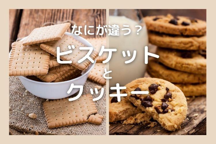 「ビスケット」と「クッキー」似ているけど、違いは何?【食べ物の違い豆知識】