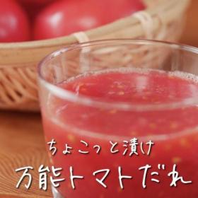 「トマトの万能だれ」が何にかけても絶品!餃子にも、めんつゆにも【ちょこっと漬け♯47】