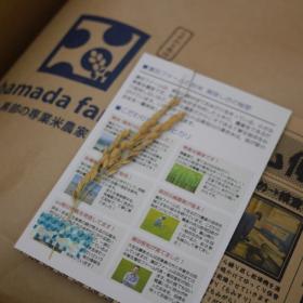 できたての「新米」を発送中!こんな気持ちで、各ご家庭にお米を届けています【お米農家のヨメごはん#38】