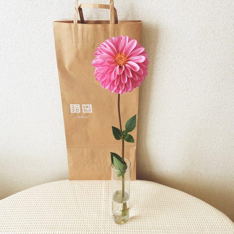 服だけじゃなくお花も買える…1束390円「ユニクロの生花」【本日のお気に入り】