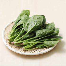 ほうれん草は緑黄色野菜の王様!栄養・茹で方・上手な保存方法まで徹底解説【管理栄養士監修】