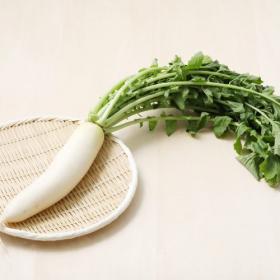 大根は葉とセットで食べて栄養をまるごと摂取!切り方・保存方法も徹底解説【管理栄養士監修】