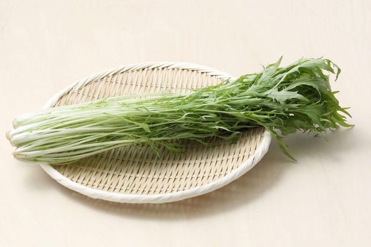 シャキシャキ水菜は低カロリー&ビタミン豊富!フレッシュさをキープする保存方法も解説【管理栄養士監修】