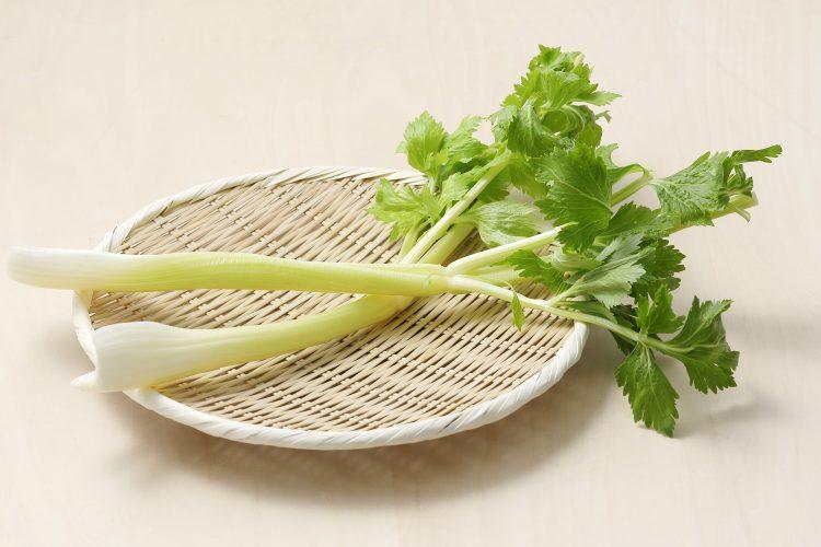 セロリは葉も残さず活用すべし!栄養、保存方法、おいしく食べる下ごしらえまで徹底解説【管理栄養士監修】